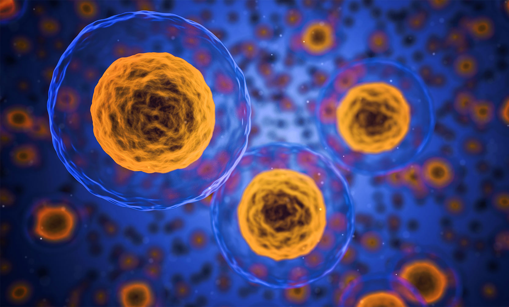 Artists rendering of cells on a blue background.